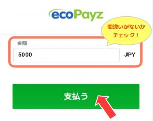 エコペイズ(ecoPayz)での入金方法!! ~スマホ編~-4